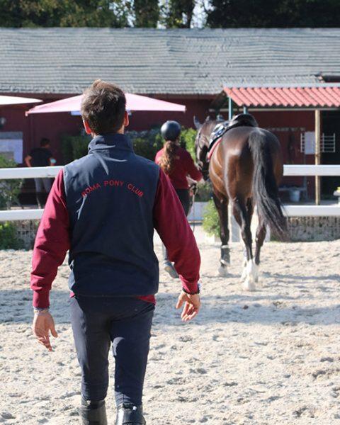 scuola cavalli